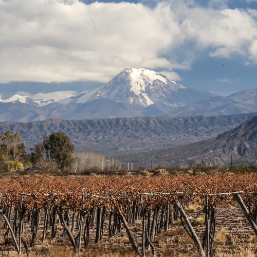 Weinanbaugebiete in Argentinien